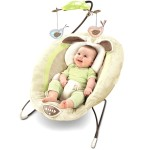 Fisher-Price My Little Snugabunny Bouncer – $44.99!