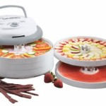 Nesco 700-Watt Food Dehydrator – $49.88 Shipped!