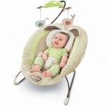 Fisher-Price Deluxe Bouncer Just $38.99 Delivered