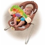 Fisher-Price Deluxe Bouncer Only $18.99!