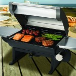 Today Only – Cuisinart All-Foods 12,000-BTU Portable Outdoor Tabletop Propane Gas Grill For $116.99 w/Free Shipping!