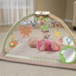 Fisher-Price My Little Snugabunny Ultra Comfort Musical Gym For $52.66 Shipping Included!