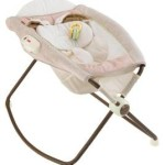 Fisher-Price Newborn Rock n' Play Sleeper For $49 Shipped!