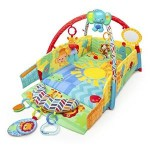 Bright Starts Sunny Safari Baby's Play Place Just $54.84 Shipped (Was $79.99)
