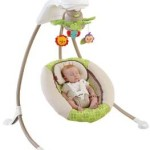 Fisher-Price Deluxe Cradle 'n Swing Only $82.45!