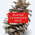 Nordstrom Winter Clearance Sale: Up To 70% Off Sitewide + Free Shipping