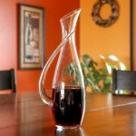 Lily's Home Modern Wine Decanter – $14.95