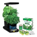 Miracle-Gro AeroGarden Sprout LED with Gourmet Herb Seed Pod Kit Only $46.99! (Grow Bug Free Fresh Dill, Parsley, Basil & more!)