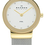 Skagen Women's Two-Tone Mesh Watch Just $63.99 Shipped!
